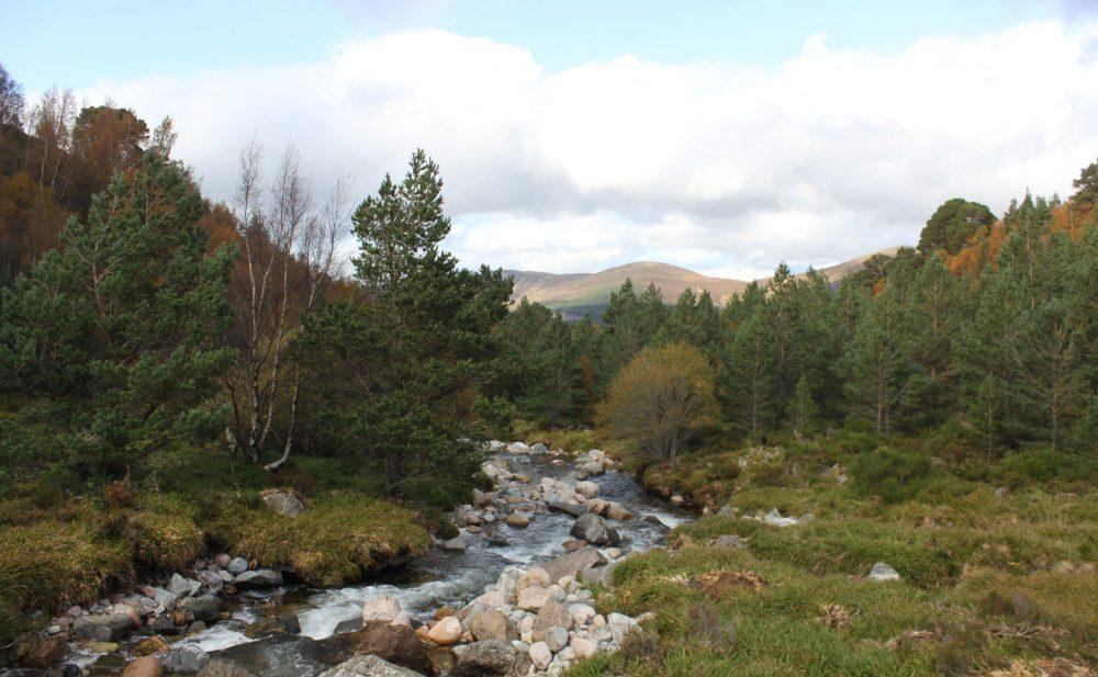Cairngorms en ecosse