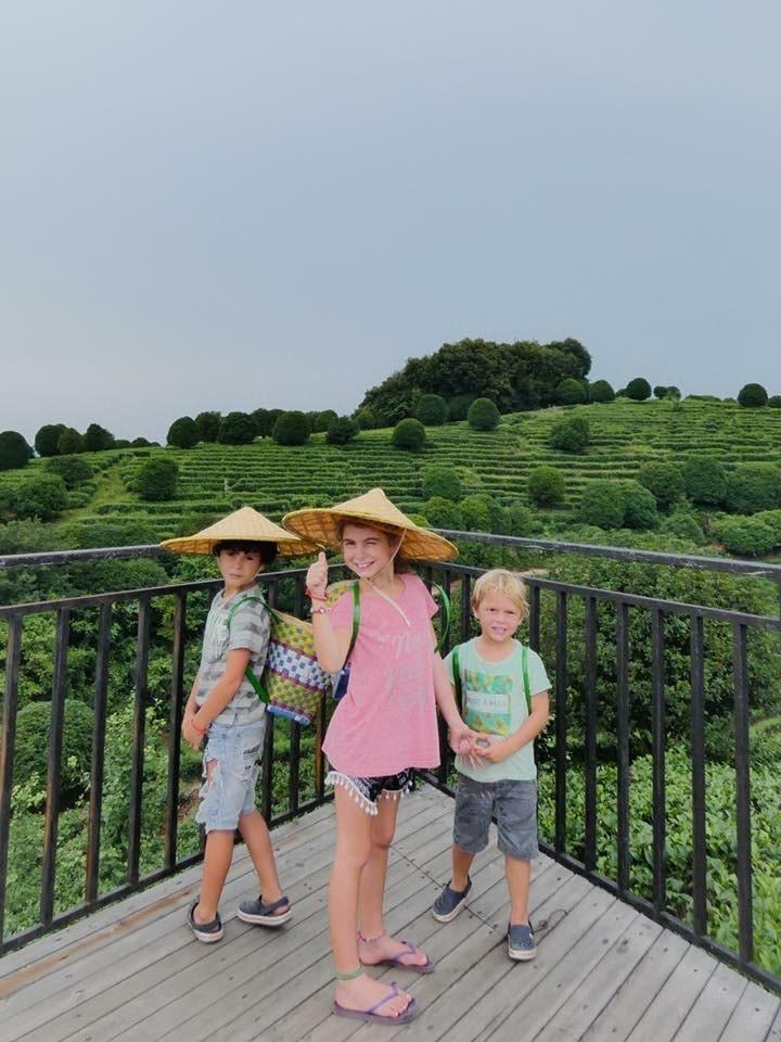 enfants devant riziere chine