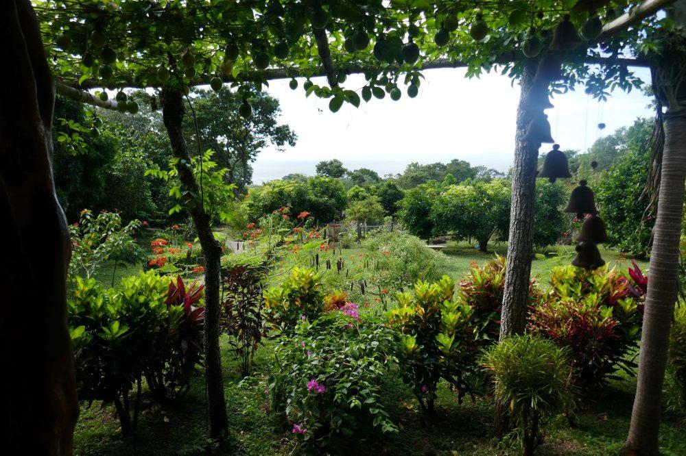 jardin ometepe nicaragua