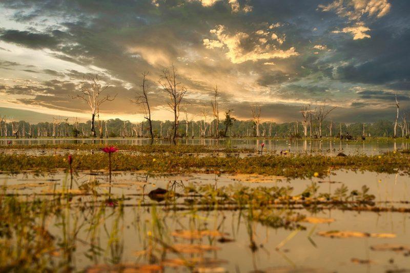 coucher de soleil au tonle sap voyage au cambodge