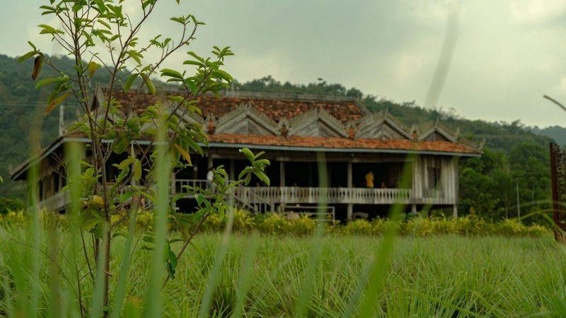 Cambodge plantation Kampot