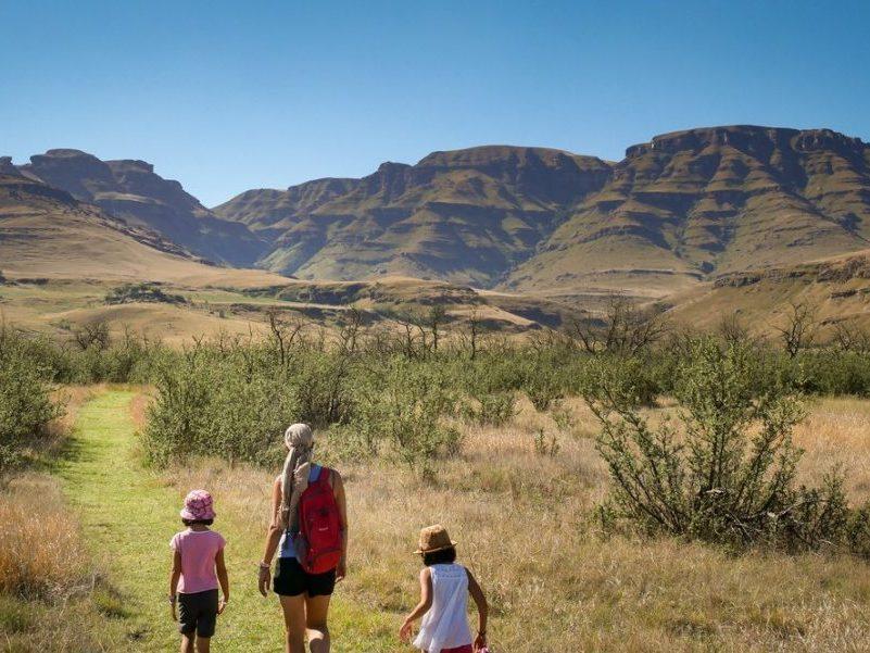 famille en randonnée en afrique du sud dans la savane