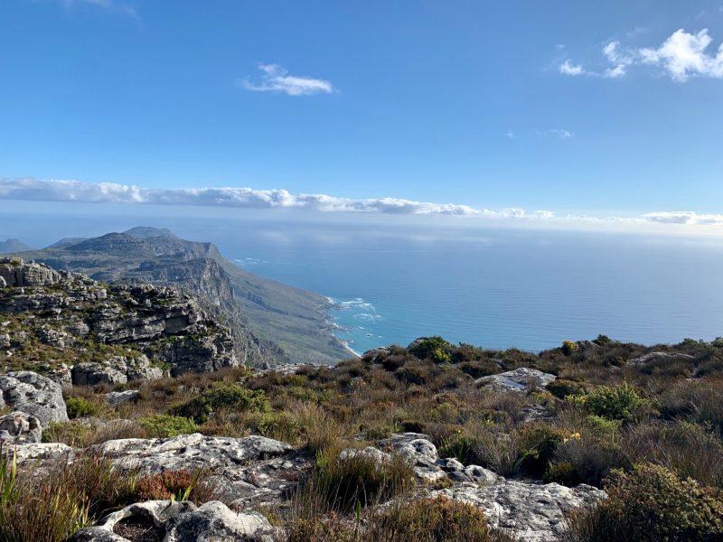 table mountain en afrique du sud