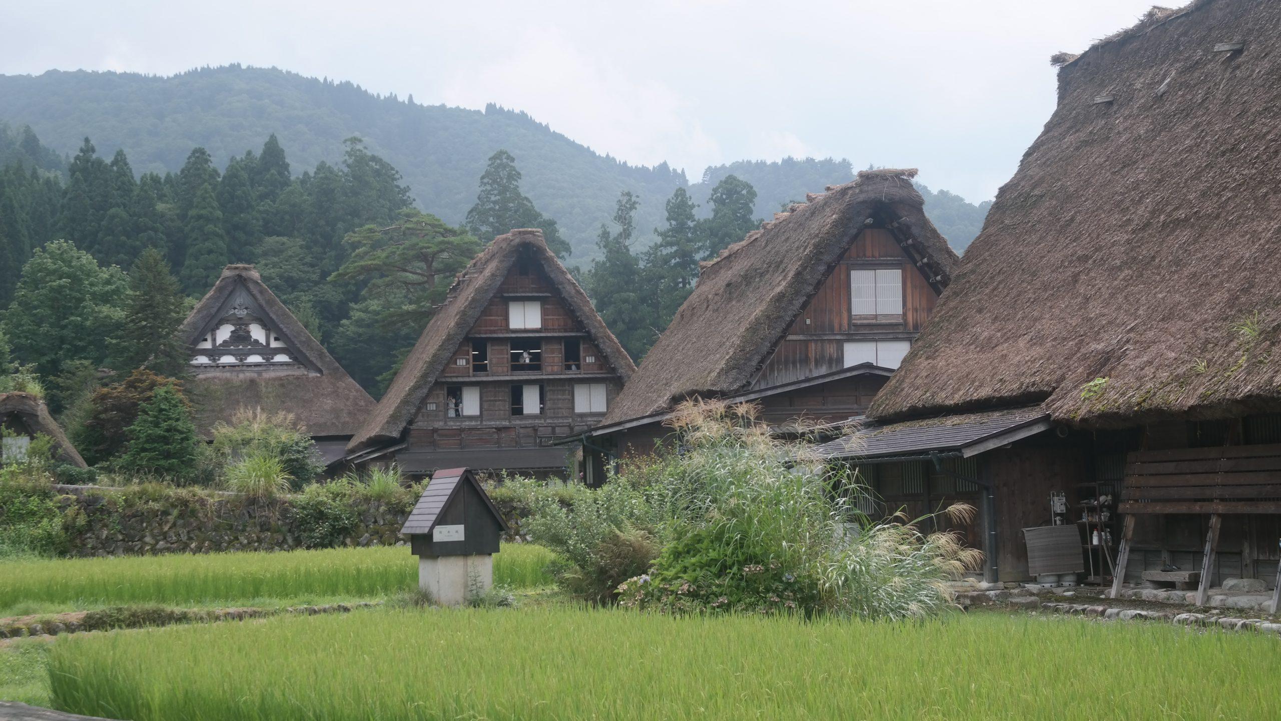 maison toit de chaume japon
