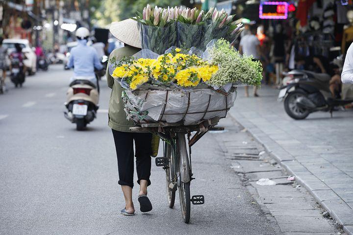 vélo plein de fleur au vietnam