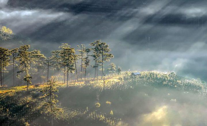 paysage embrumé de dalat