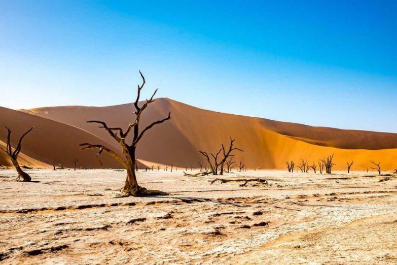 dune desert de namib