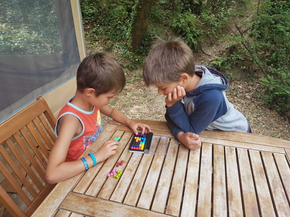 smart games enfant casse tête voyage en famille