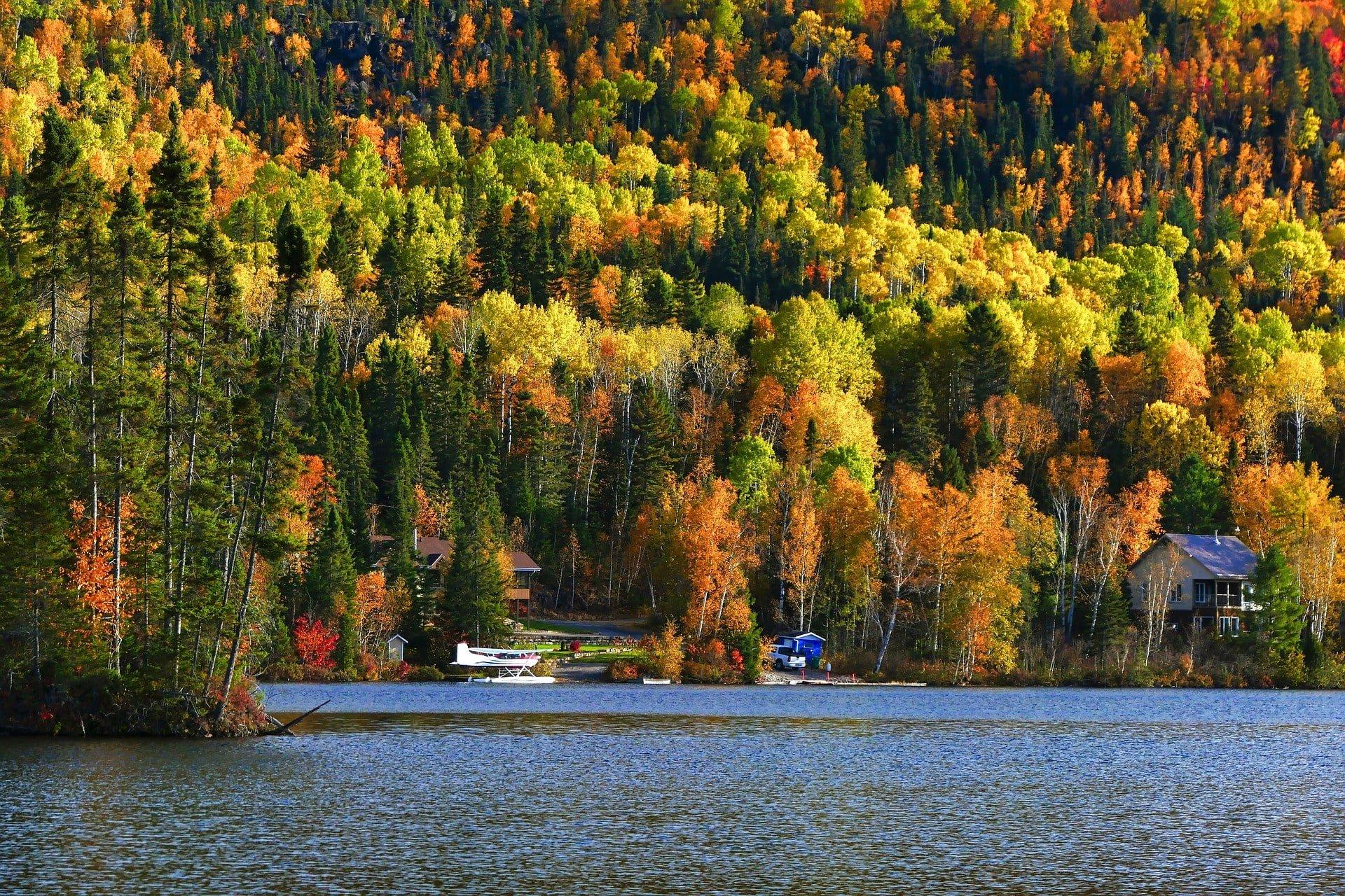foret devant un lac au quebec au canada voyage en famille