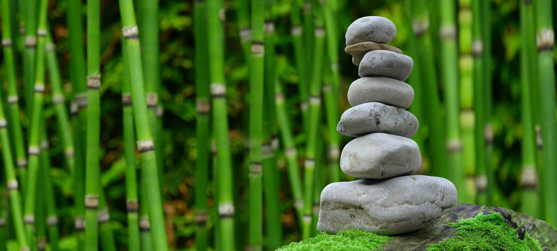 jardin zen japon voyage en famille