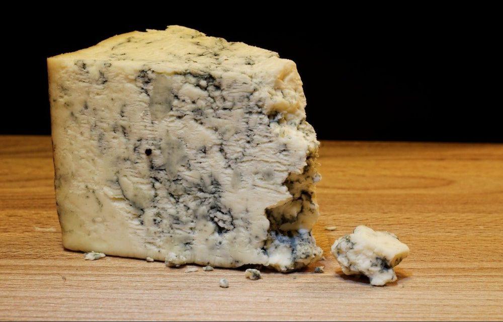 morceau de fromage roquefort occitanie