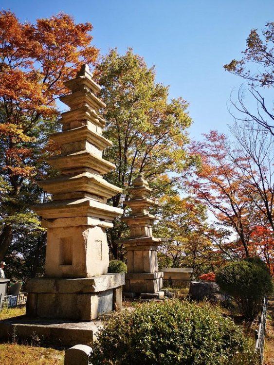 temples au milieu des arbres