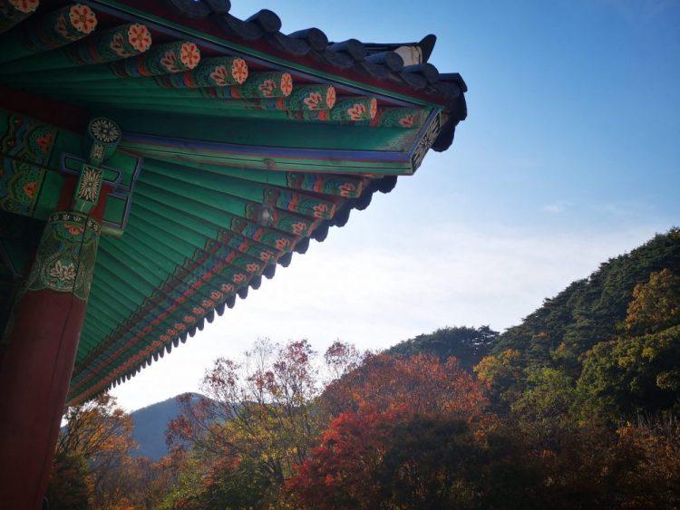 temple haiensa en automne