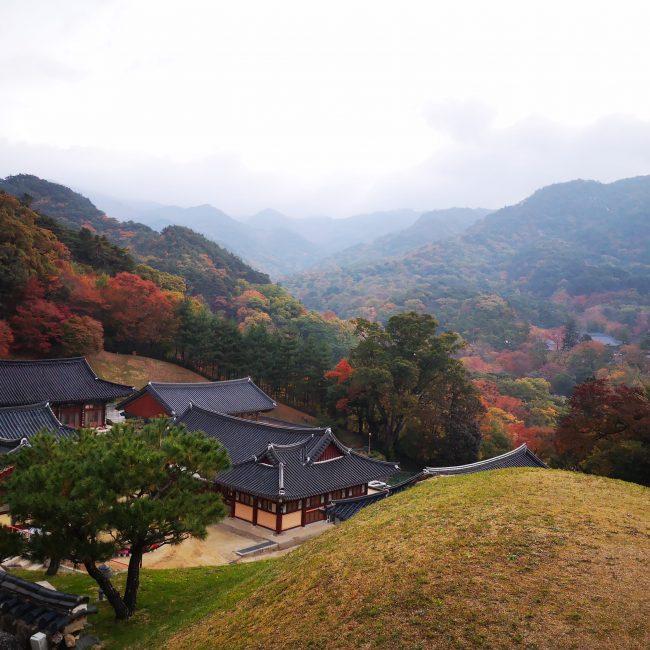 coree en automne templestay