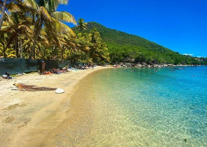 plage de sable blanc avec des cocotiers