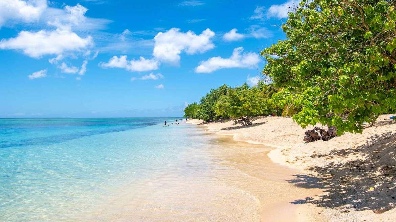 plage paradisiaque de sable blanc guadeloupe