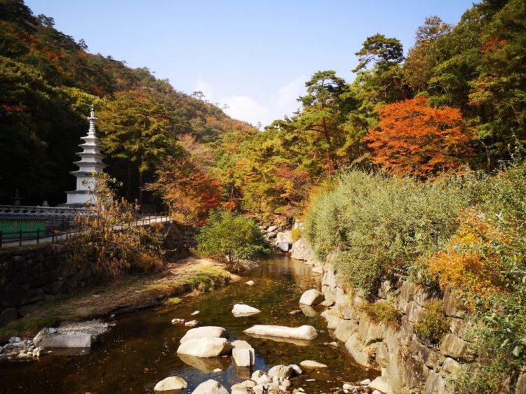 environ temple haiensa