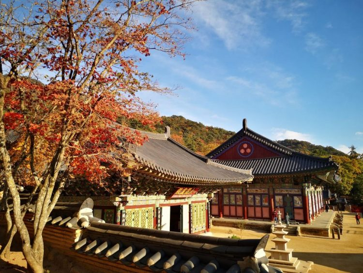 automne en coree temple haiensa