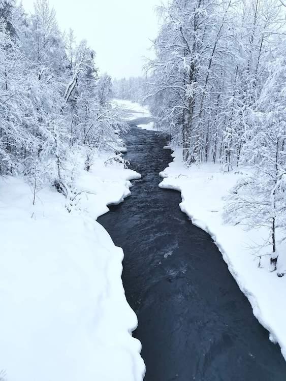 nature hiver finlande