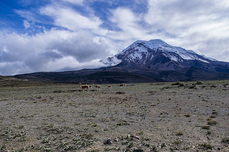 paysage volcan chimboroza