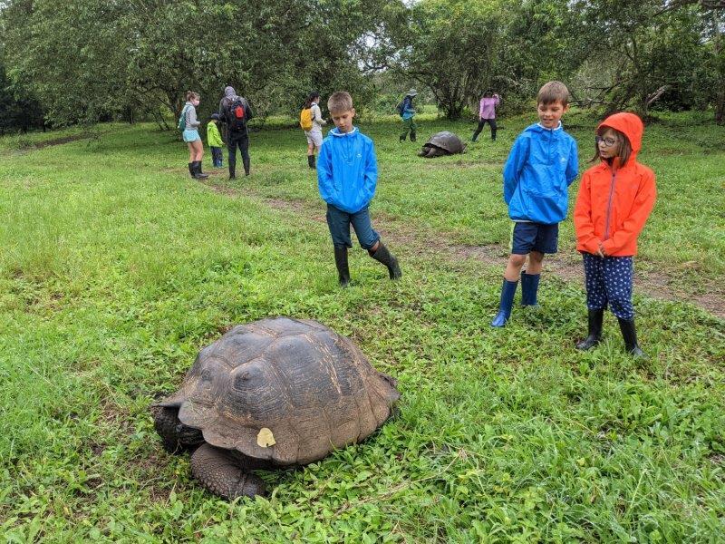voyage galapagos en famille equateur tortues terrestre
