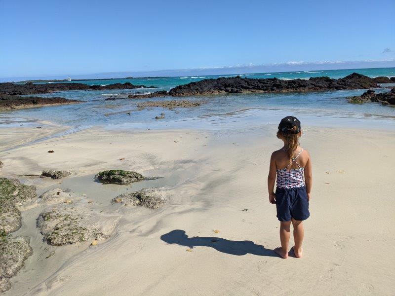 voyage galapagos famille plage puerto villamil isabela