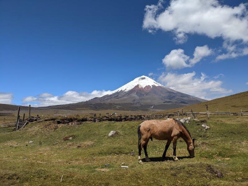 voyage equateur randonnée cheval Cotopaxi