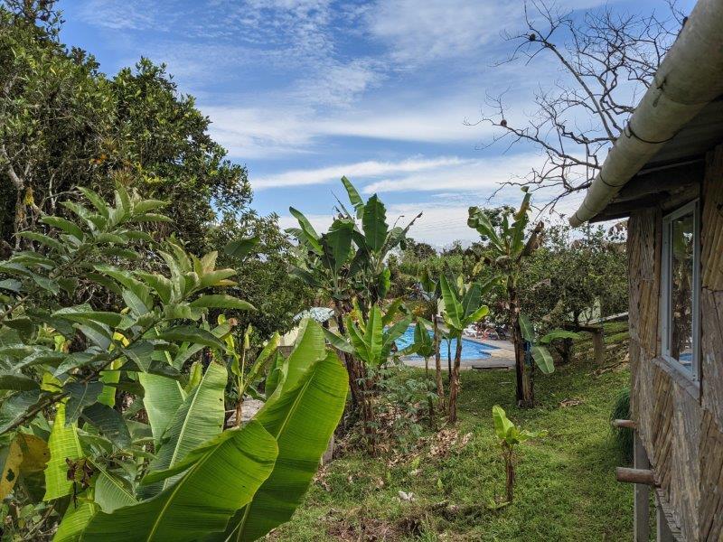 voyage equateur randonnée mindo cabane